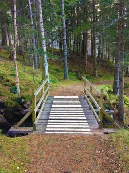 Anti Slip Decking Strips Woodland Bridge