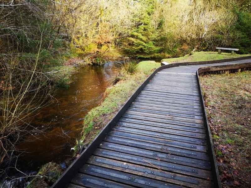 Anti Slip Decking Strips on Slippery Woodland Walkway
