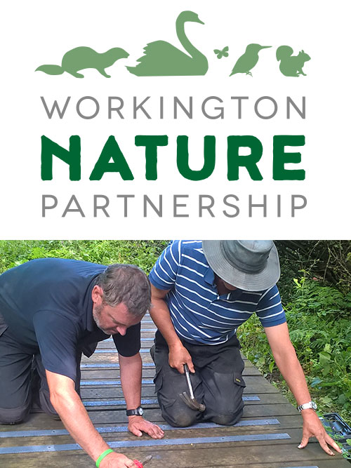 The Project is supported by the Friends of Harrington Nature Reserve group.