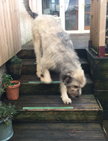Non-slip decking strips door steps, pets happy.